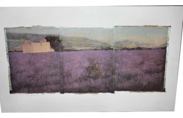 Linda Cook lithograph