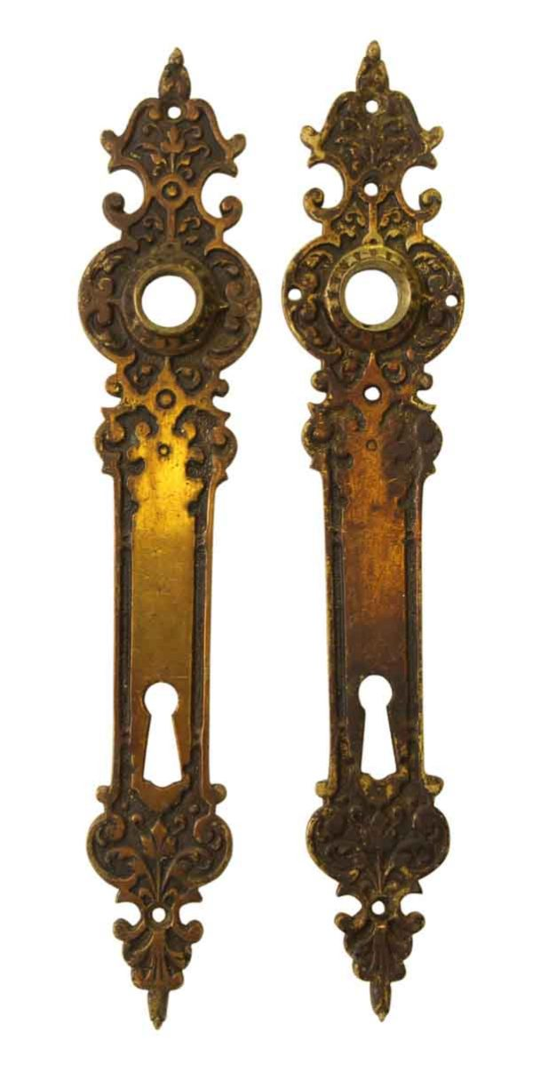 Pair of of Ornate European Back Plates