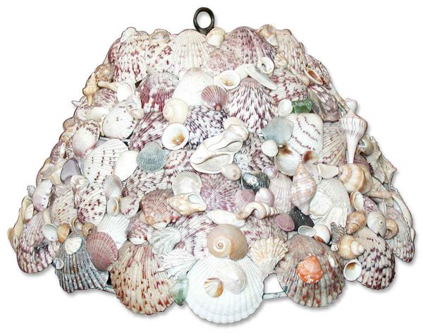 Seashell Ceiling Light