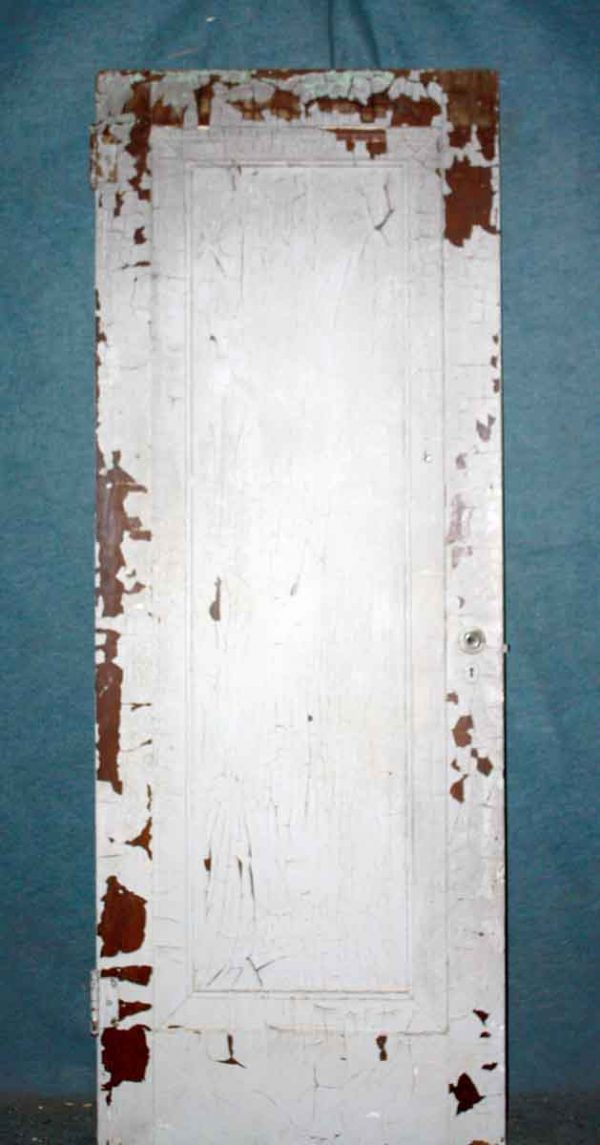 Single Panel White Painted Door