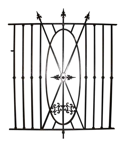 Tall Iron Fence for Your Mansion