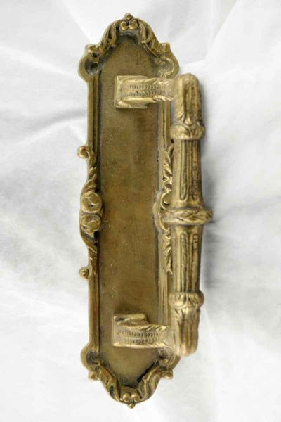 Golden Backplate with Ornate Door Pull