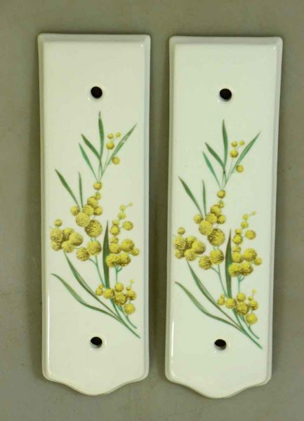 Pair Of Limoges Porcelain Floral Push Plates