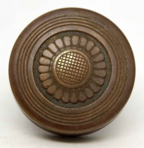 Vernacular Bronze Single Floral Knob