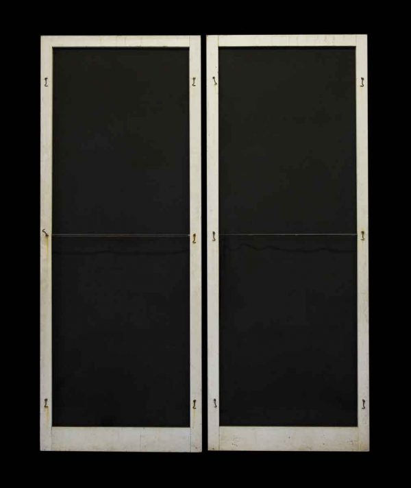 Pair of Vintage Screen Doors