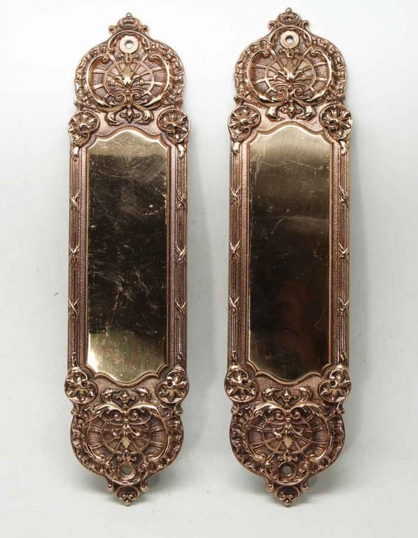 Pair of Bronze Ornate Gilded Push Plates