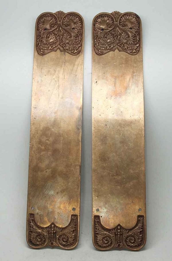 Pair of Ornate Brass Push Plates