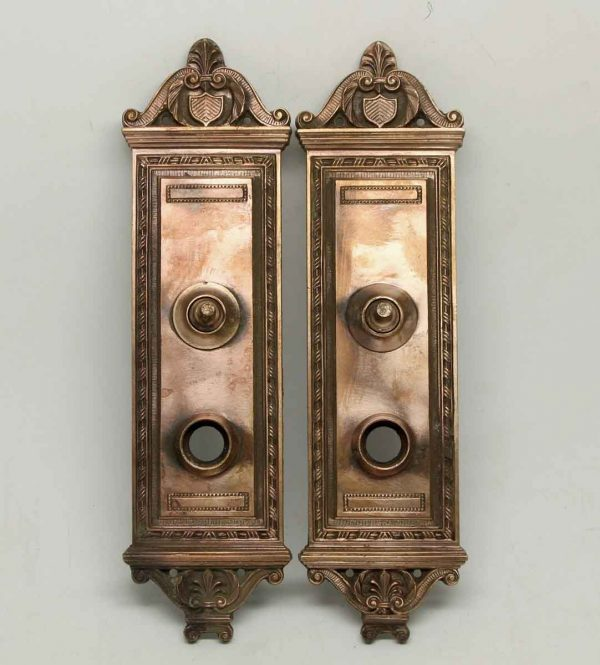 Pair of Ornate Bronze Back Plates