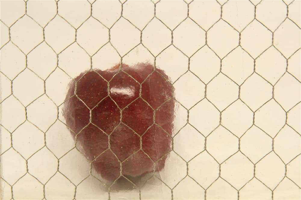 Tag: chicken-wire glass | Olde Good Things