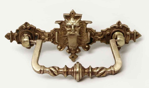 Single Polished Brass Lion Pull - Cabinet & Furniture Pulls