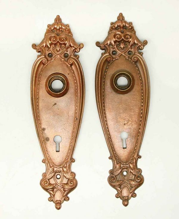Pair of French Copper Washed Back Plates - Back Plates