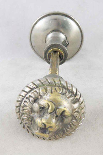 Lion Head Nickel Over Bronze Knob - Door Knobs