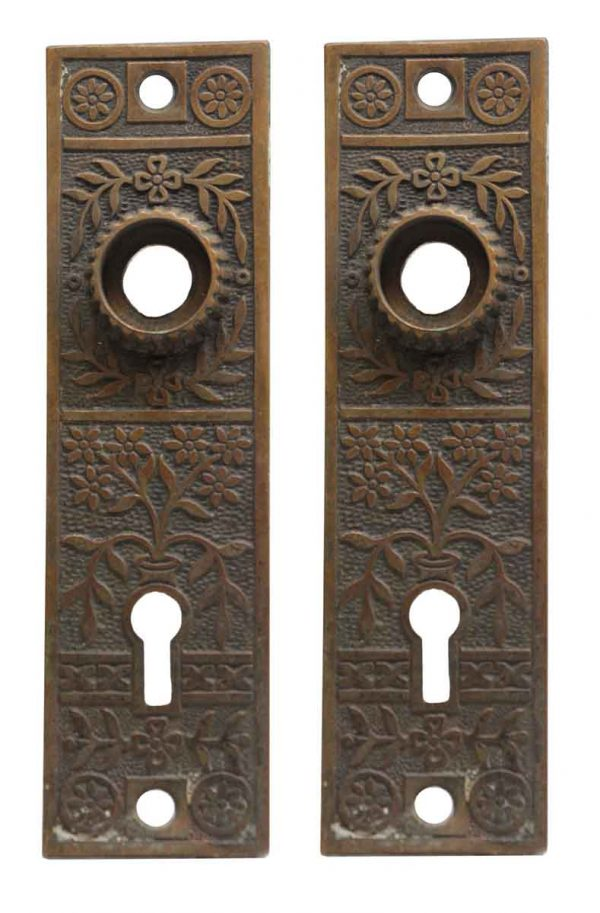 Back Plates - Pair of Aesthetic Bronze Back Plates