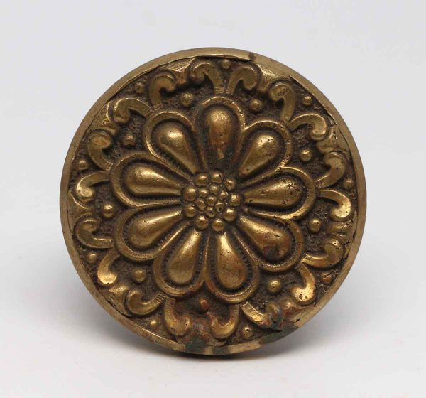 Door Knobs - Brass Radial Flower Door Knob