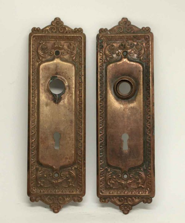 Back Plates - Egg & Dart Brass Door Back Plates