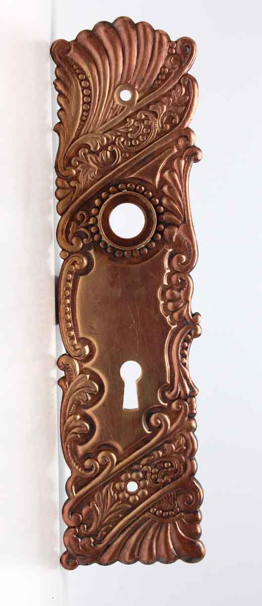 Back Plates - Polished Brass Roanoke Door Back Plate with Keyhole