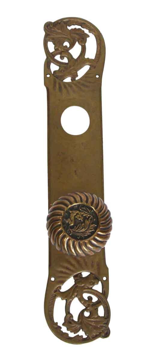 Door Knob Sets - Fantastical Beast Bronze Door Knob & Back Plate Entry Set
