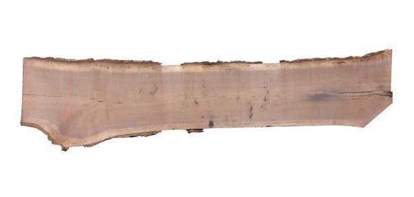 Live Edge Wood Slabs - 15 Foot Walnut Slab F2