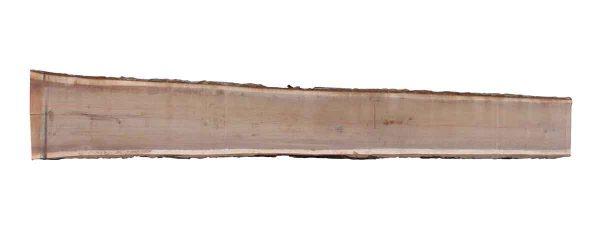 Live Edge Wood Slabs - 16 Foot Walnut Slab 5E