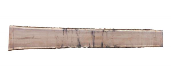 Live Edge Wood Slabs - 16 Foot Walnut Slab 5F