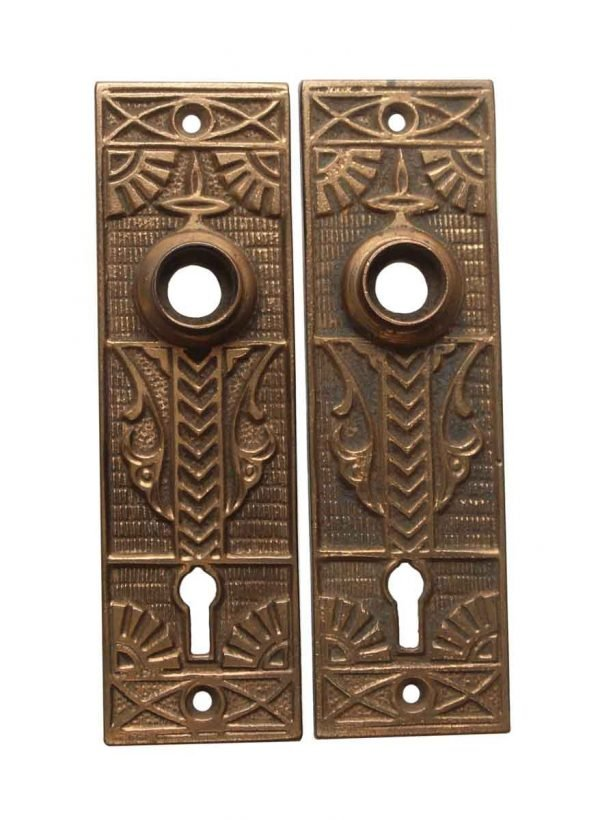Back Plates - Pair of Brass Aesthetic 5.375 in. Passage Door Back Plates