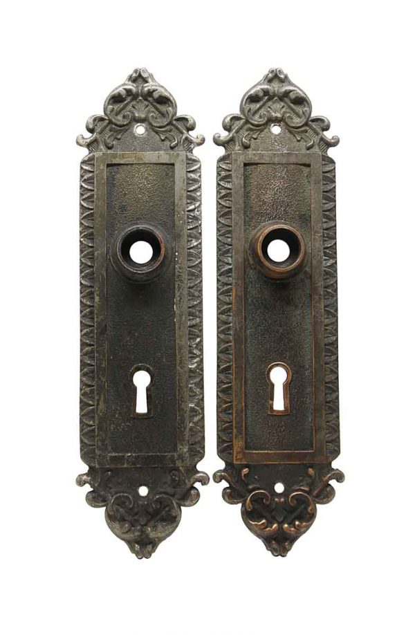 Back Plates - Pair of Nickel Plated Bronze Door Back Plates