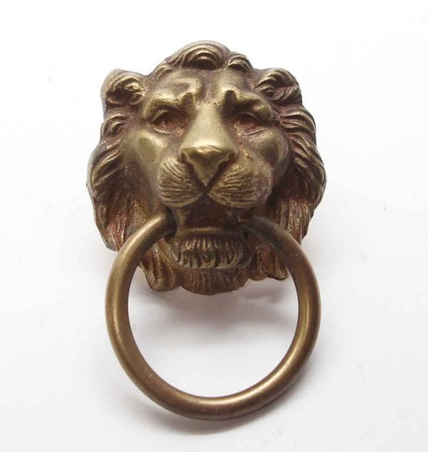 Knockers & Door Bells - Brass Lion Head Door Knocker or Pull